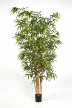 kunstplant New Bamboe big leaf 240cm