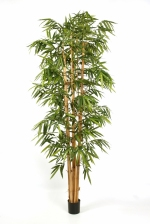 kunstplant New Giant Bamboe big leaf 240cm