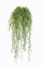 Long hair bush 80cm Groen