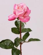 Roos roze 70cm