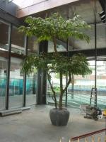 Longifolium schermen kunstboom