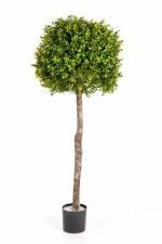 Buxusbol op stam 105cm Ø40cm