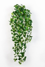 English Ivy 85cm