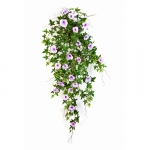 Morning glory hanging bush 95cm lila / paars