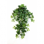Green Ivy Hanging Bush 70cm