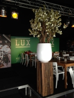 Bloesemboom 150cm